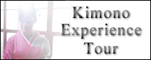 Kimono Experience and Tea Ceremony Tour